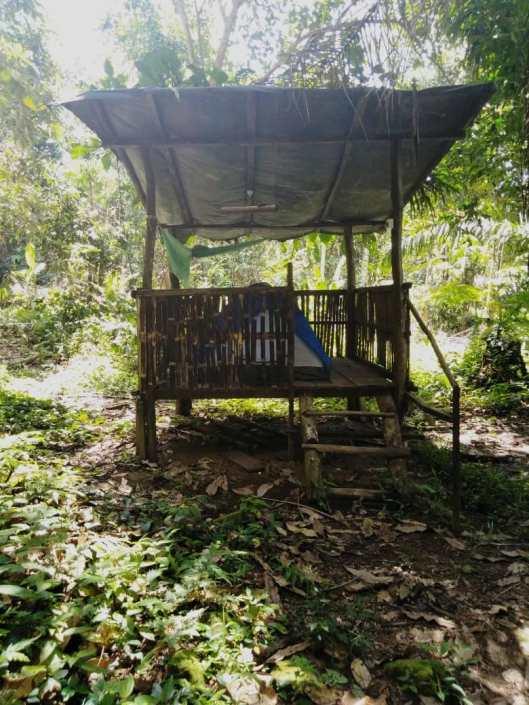 Single hut